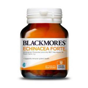 Blackmores紫锥花菊精华加强 40粒